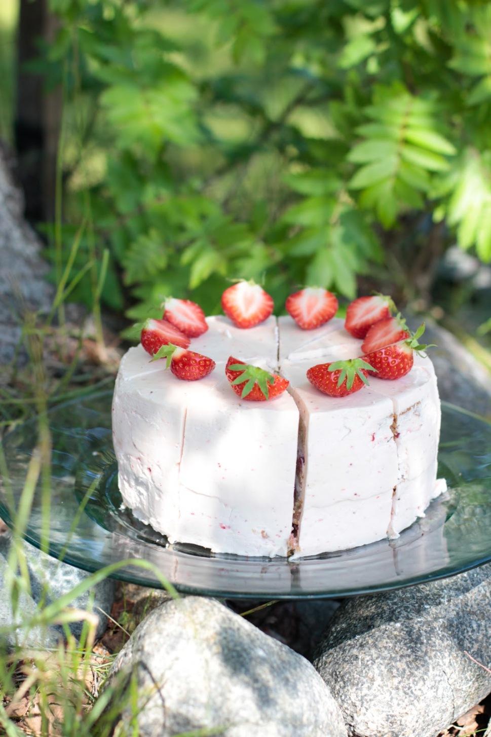Vegaaninen vaniljatäytekakkupohja